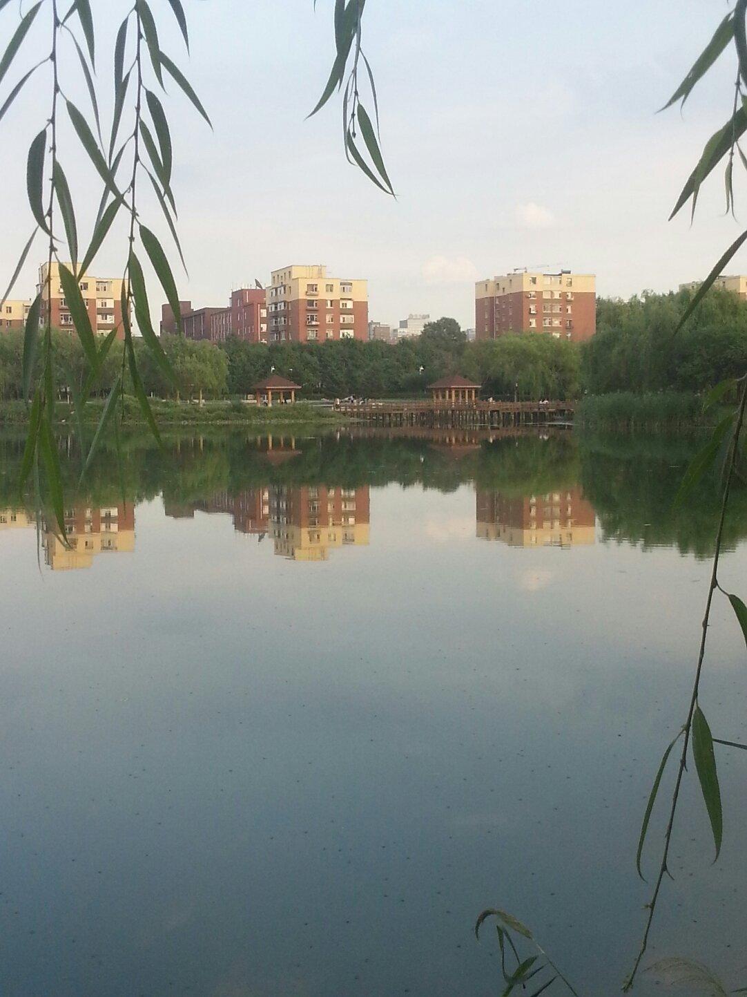 吉林省长春市绿园区锦西路靠近锦绣家园小区天气预报图片
