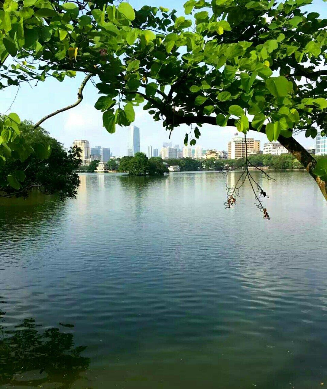 广东省汕头市金平区月眉路中山公园数学不会怎么学高中都图片