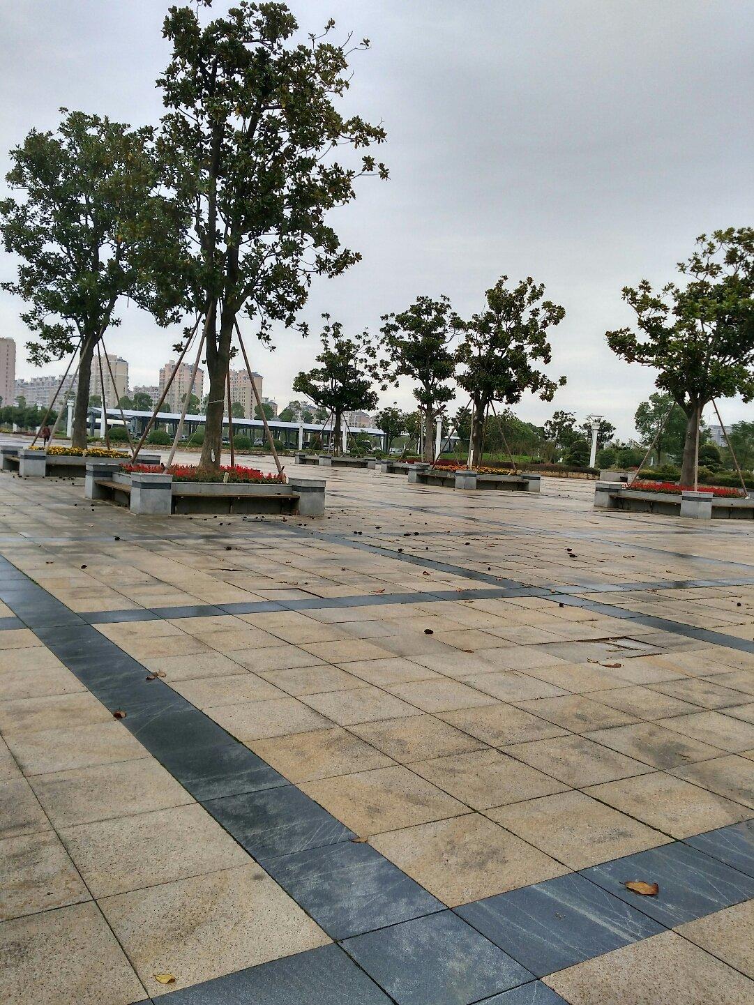江苏省南通市如东县钟山路靠近如东县信访局天气预报