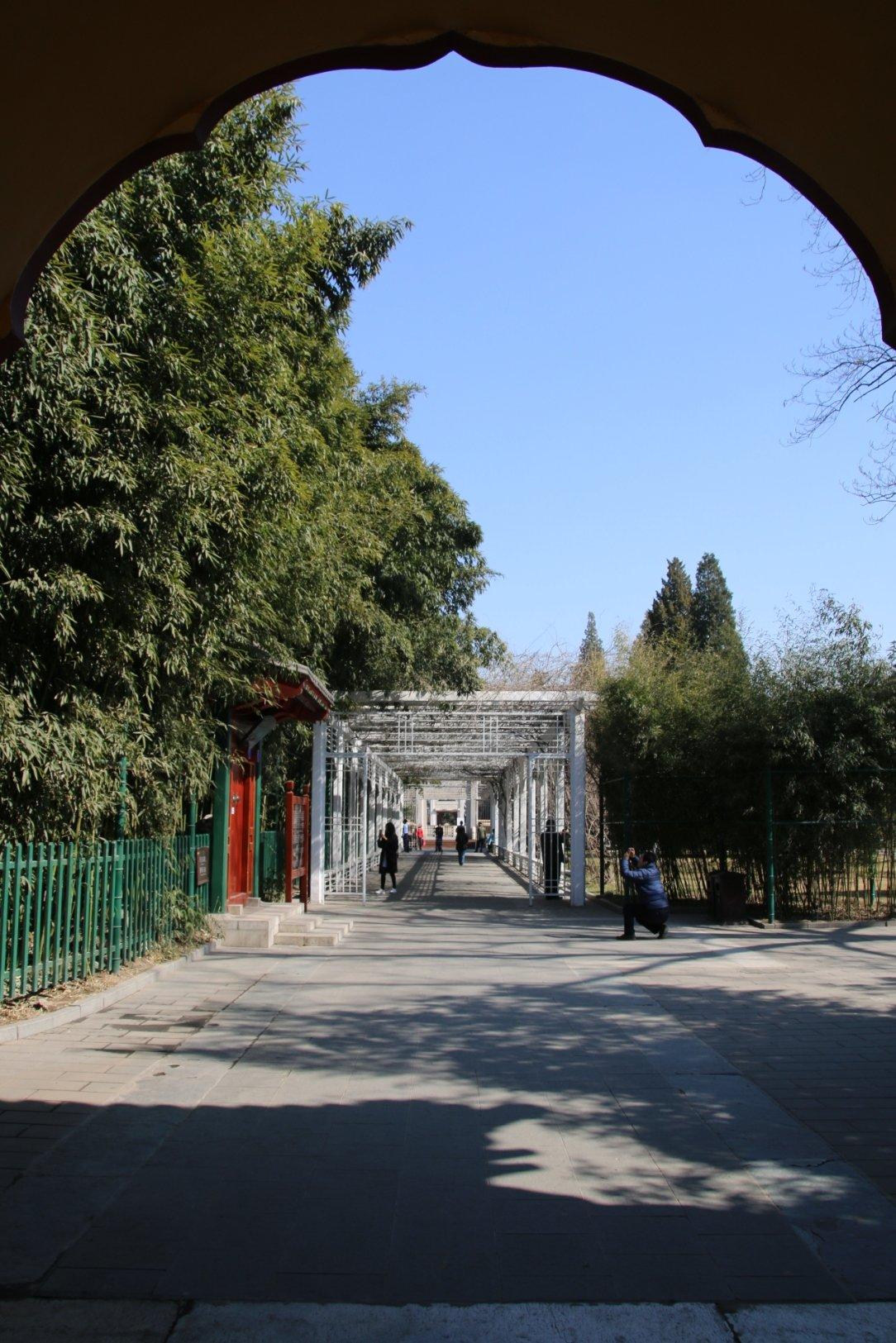 东中山公园_北京市东城区织女桥东河沿靠近中山公园-社稷坛
