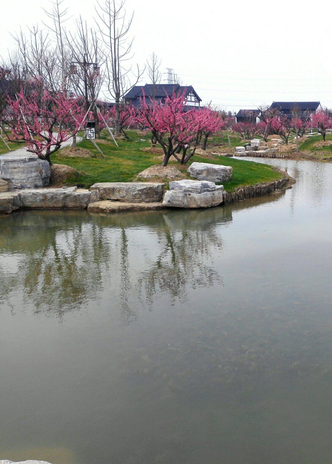江苏省南通市海安县221省道靠近城东镇界墩村监督委员会天气预报
