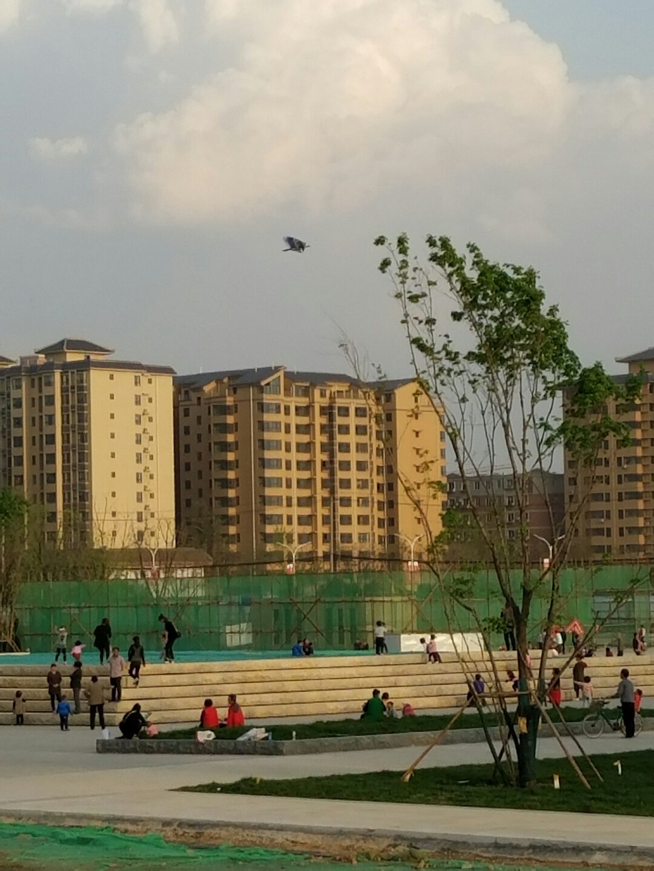 陕西省西安市未央区西宝文化靠近西安沣东高中投资考试天气全日制发展公路西安图片