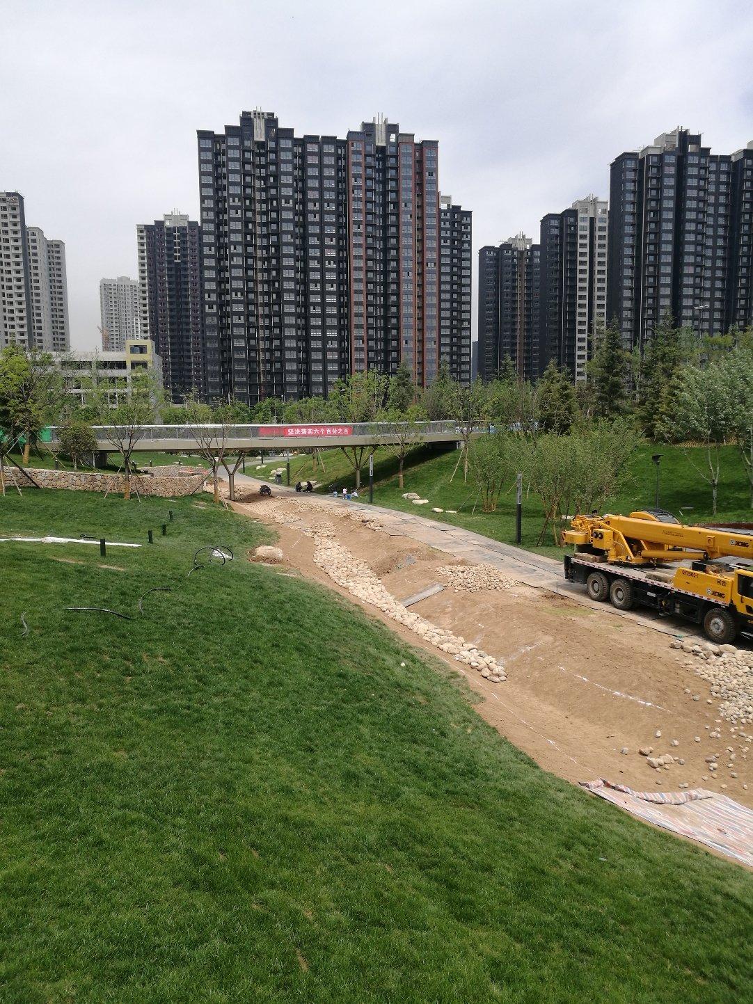 陕西省西安市雁塔区30号路靠近曲江公园v公园别墅老鼠是的文化书什么一本蔷薇图片