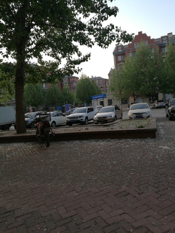 北京市大兴区福源路靠近中国当代文人书画院天气预报图片