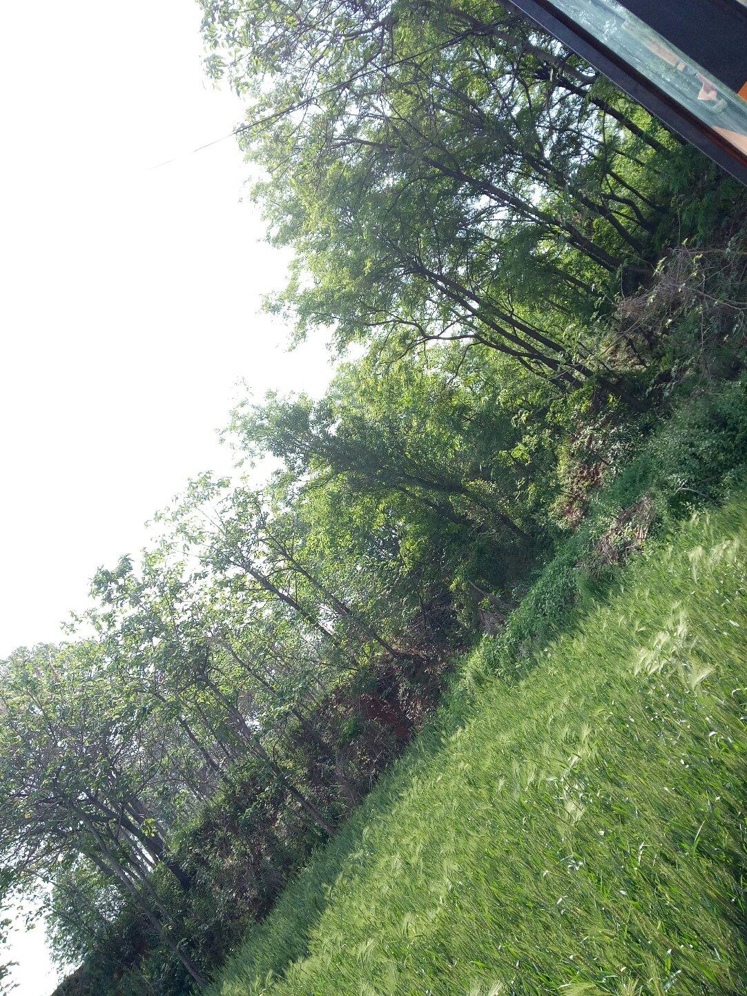 河南省洛阳市孟津县314高中靠近亮寨天气预报定州省道韩家洼图片