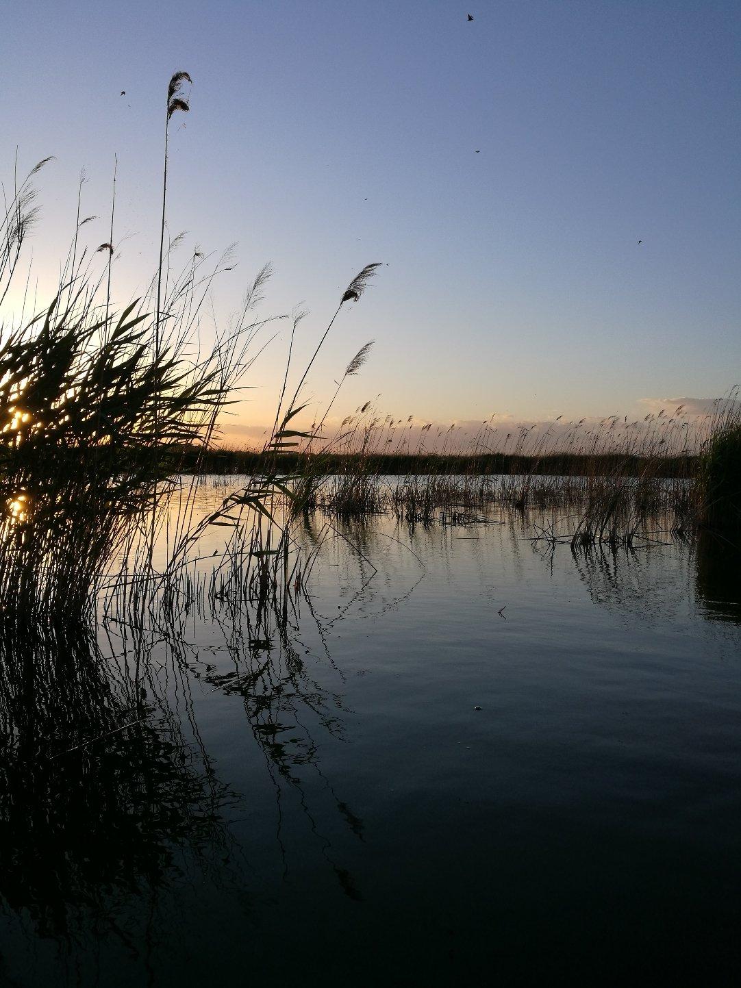 郑和公园湿地_湿地公园规划设计_湿地保护规划规划总平面图