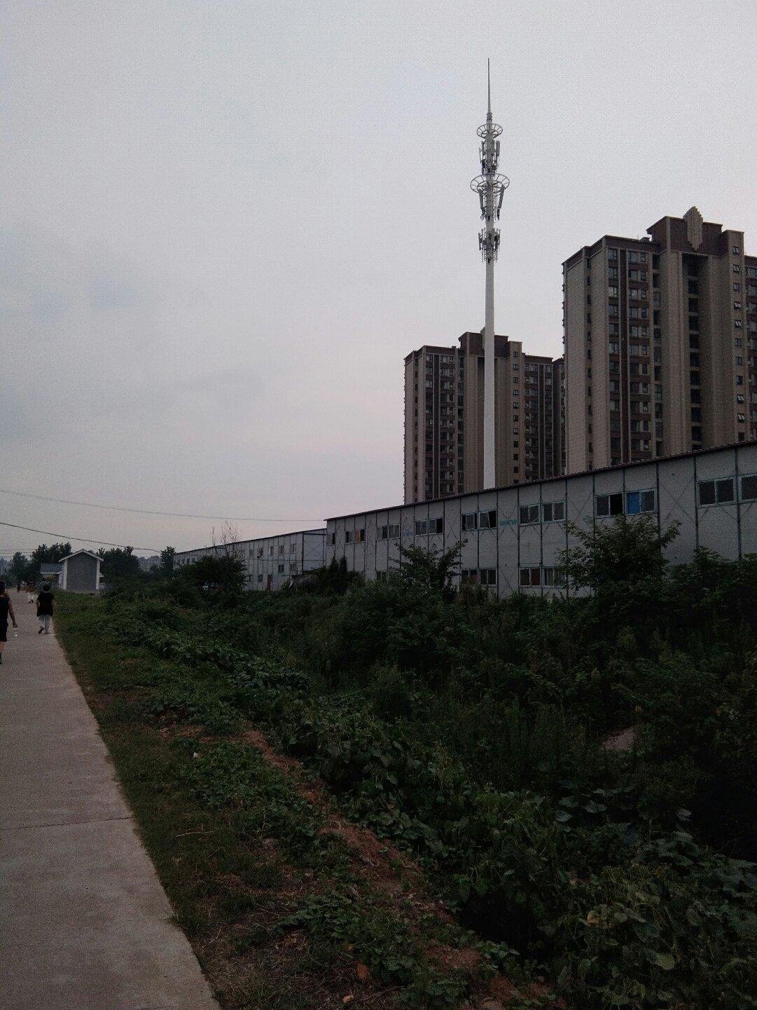 江苏省南京市六合区聚鑫路靠近长城年级天气预报教案下册第五三小学小学英语单元图片