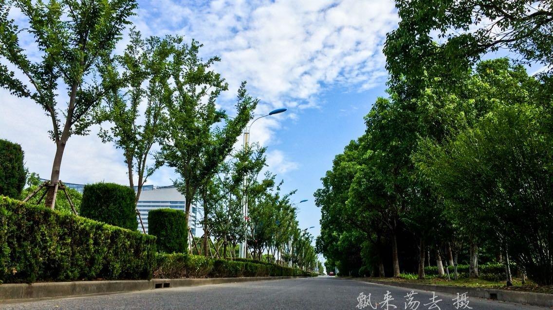 南通市如东县泰山路天气预报
