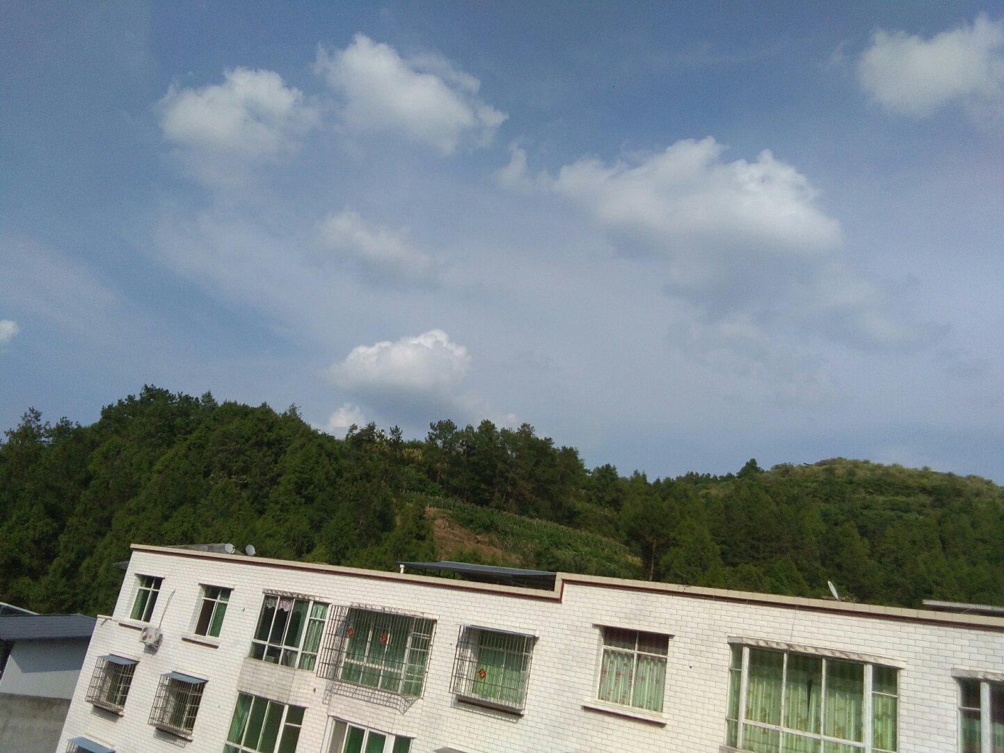 四川省绵阳市三台县上正街46-48号靠近秋林镇中心小学图片