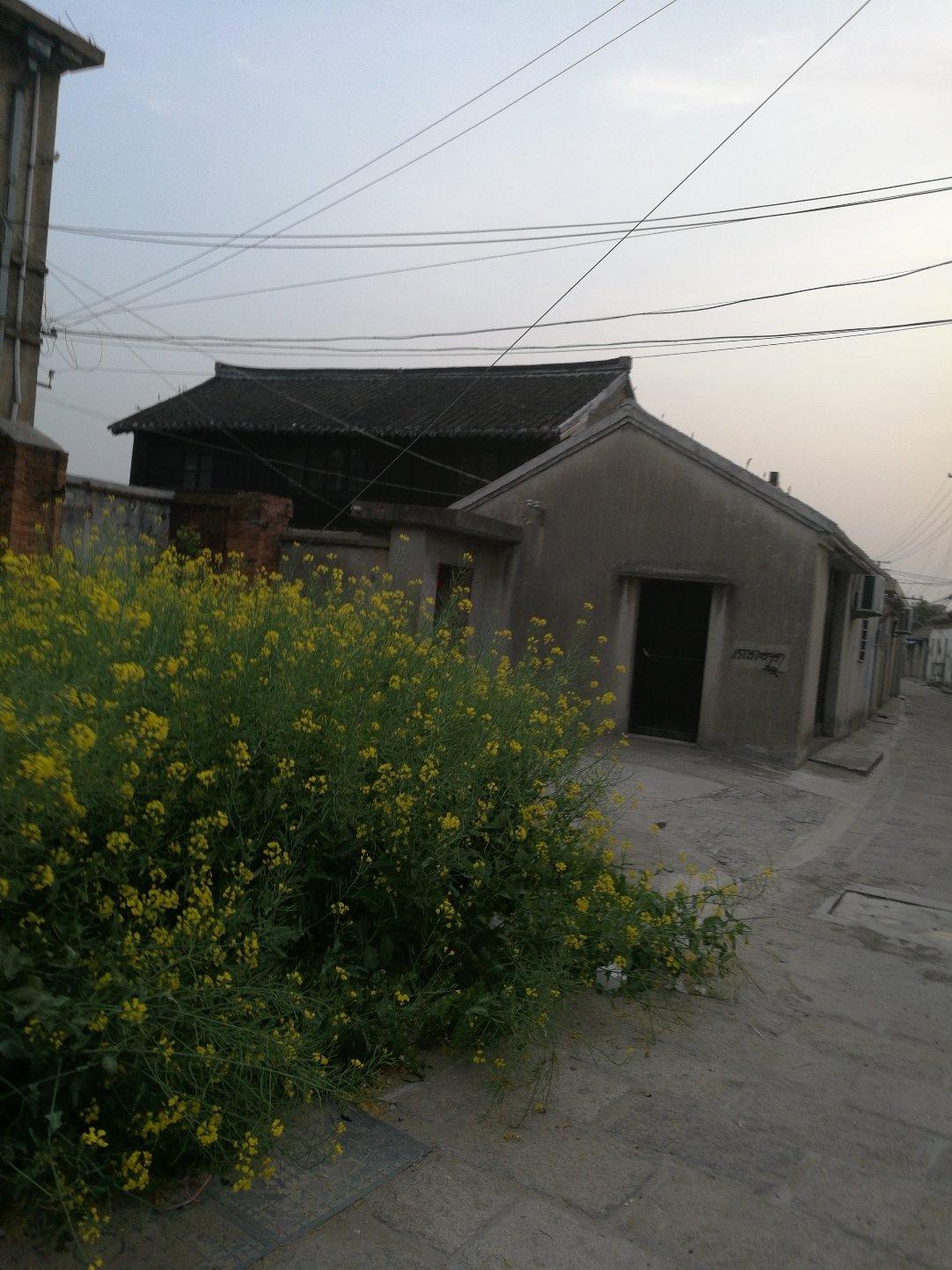 江苏省南通市如东县301县道靠近丰利快乐幼托园天气预报