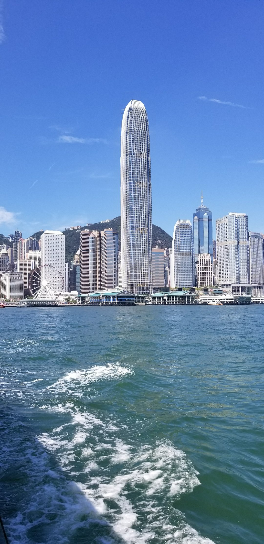 香港特别行政区油尖旺区金鸡报喜游戏玩法图片