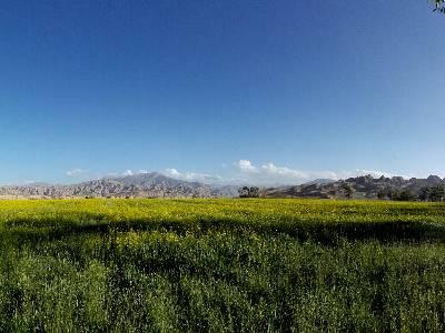 青海省海西蒙古族藏族自治州都兰县巴隆乡109国道