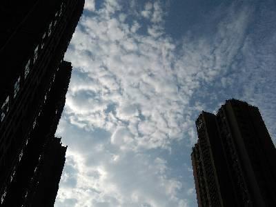 郑州市,晴,30℃,东风3级。
