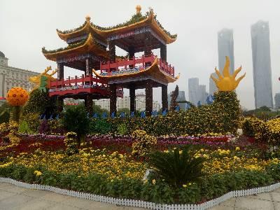 秋水广场、一年一度的菊花展、又呈现共给大家来欣赏!