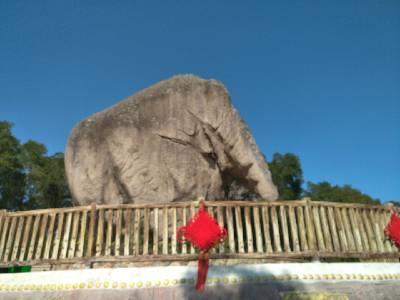 赤湖镇公园的大象石。 阴,17℃,北风1级。