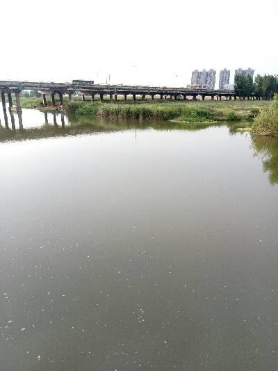 西安市,阴,29℃,东南风1级。