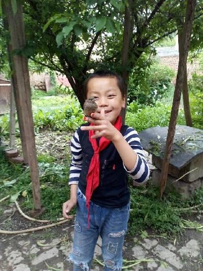 大通回族土族自治县,阴,9℃,西北风2级。
