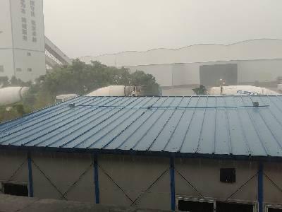 大雨,31 ℃,东风1级。