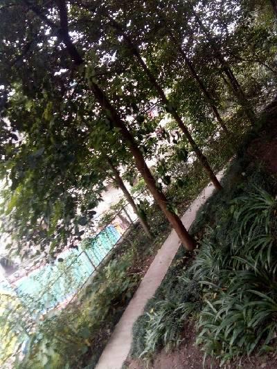 我学校哟资中县,晴,19℃,东北风1级。