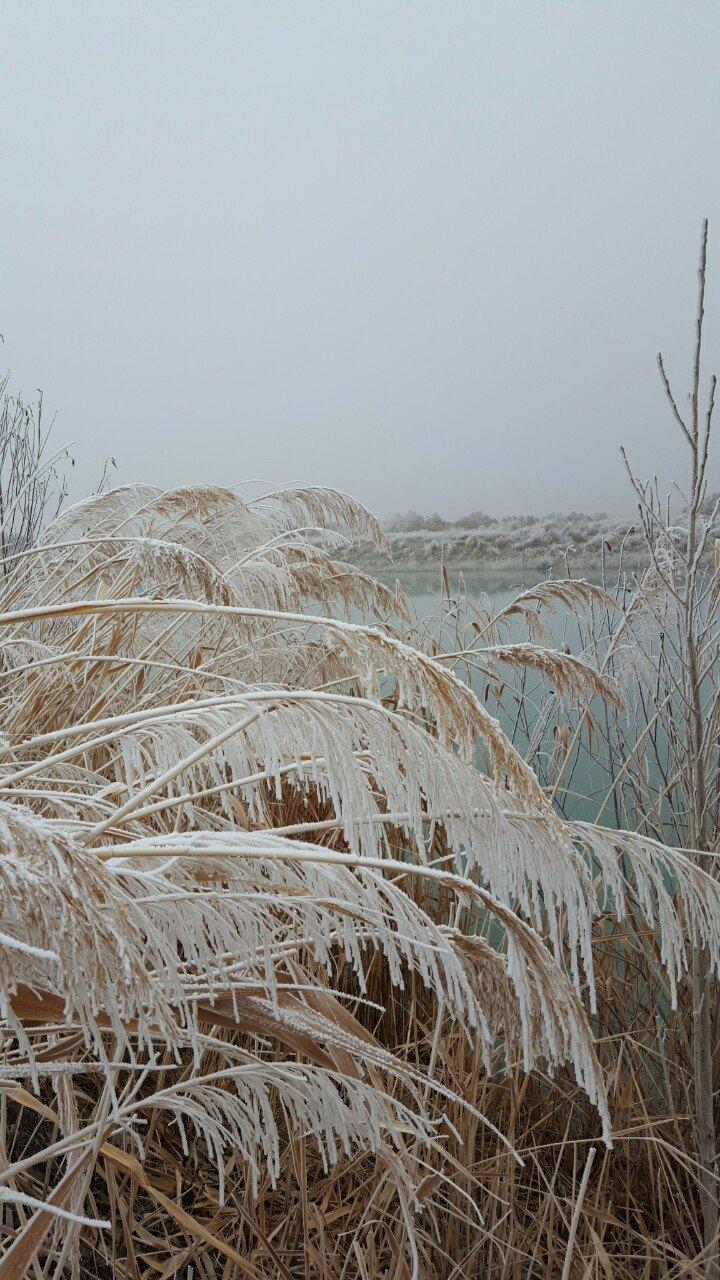 中国新疆库尔勒莲花湖旅游区塔什店扬水站天气预报