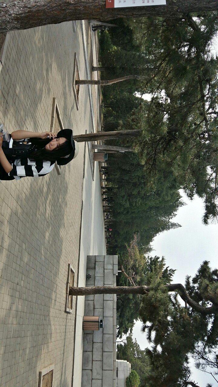 辽宁省锦州市凌河区北京路靠近绘美幼儿园天气预报