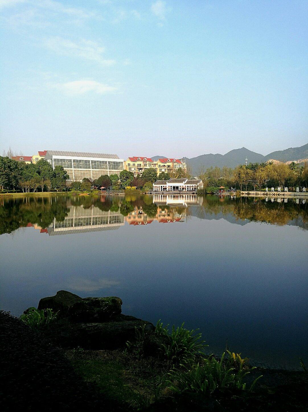重庆市九龙坡区锦驿路靠近贝迪颐园温泉度假酒店天气预报