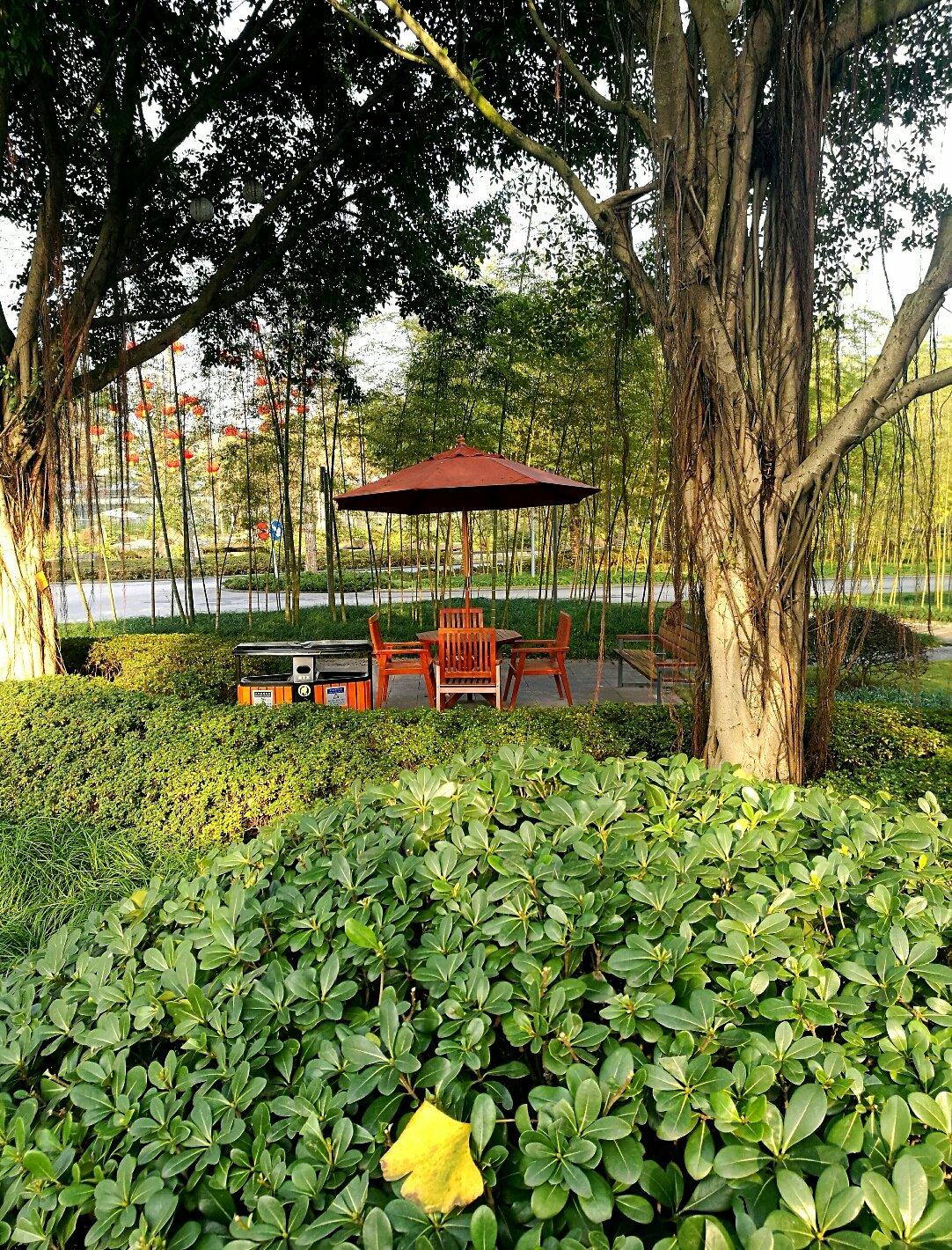 重庆市九龙坡区农科大道靠近贝迪颐园温泉度假酒店天气预报