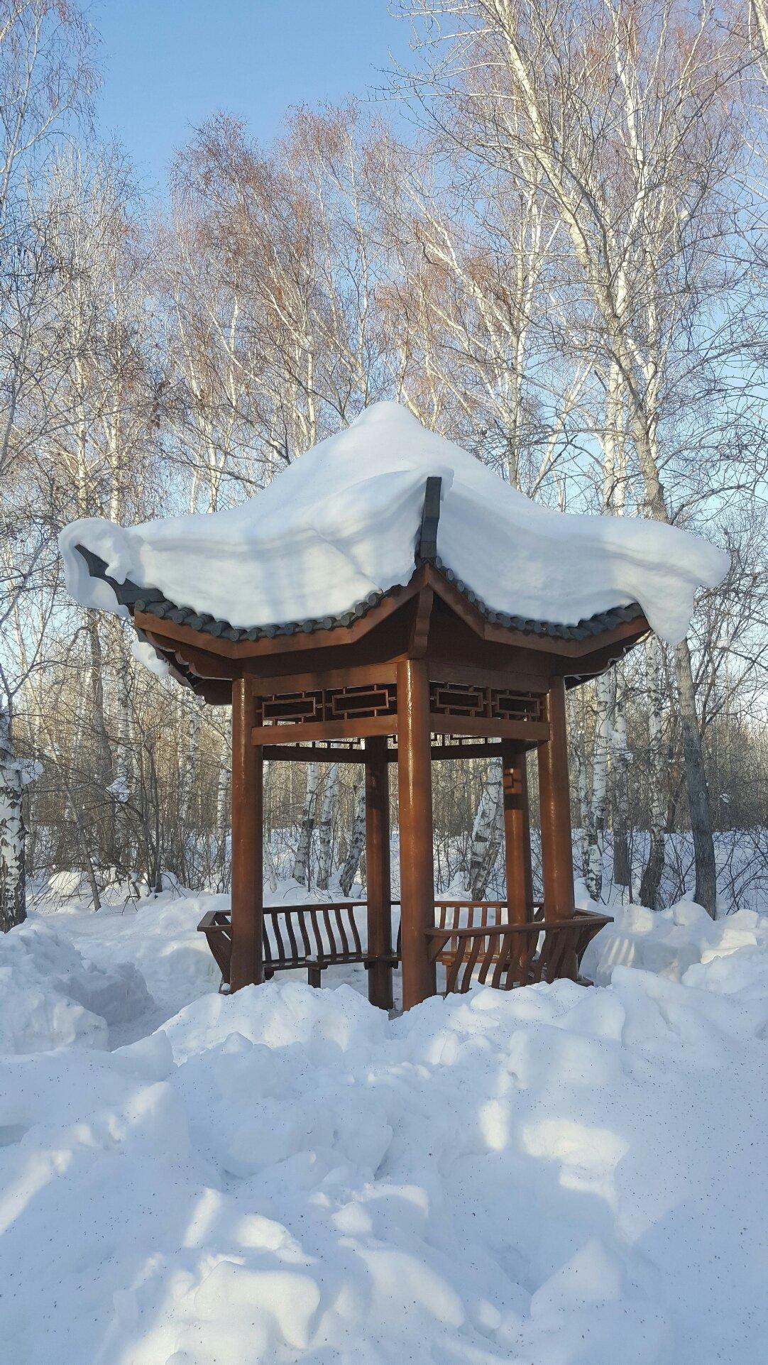 新疆维吾尔自治区阿勒泰地区阿勒泰市公园路靠近桦林公园天气预报