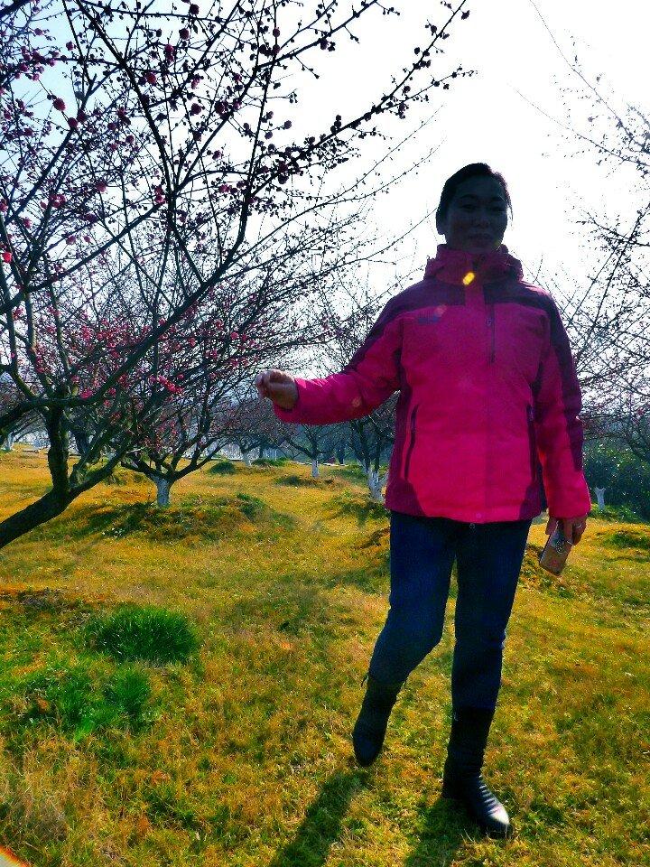 桃花源天气预报