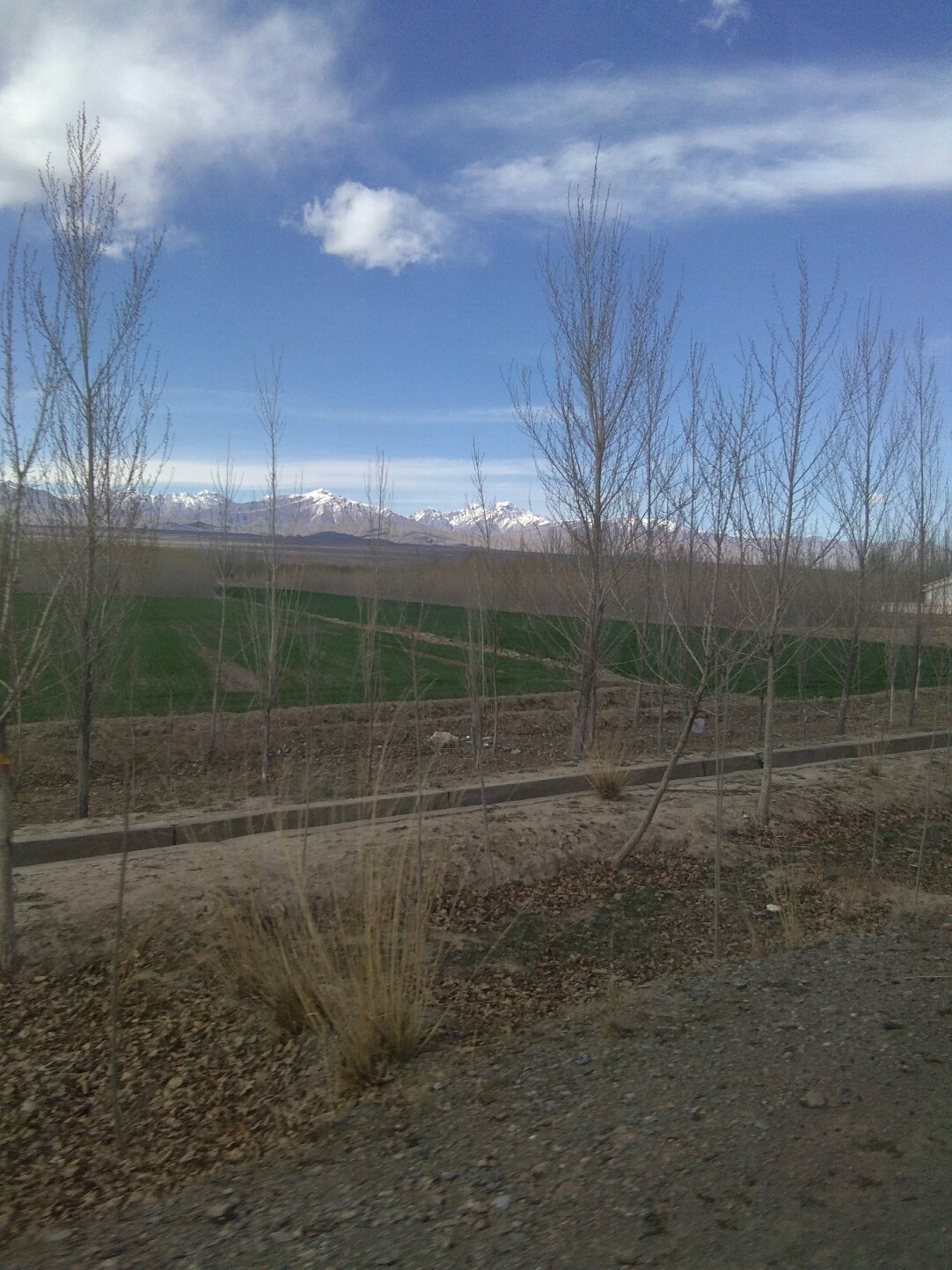 新疆维吾尔自治区克孜勒苏柯尔克孜自治州阿合奇县407县道靠近阿克特克提尔村天气预报