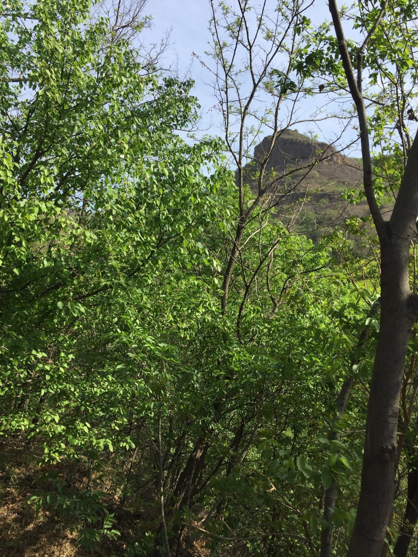 锦州市古塔区中屯乡西北7公里处锦州北普陀山风景名胜区天气预报