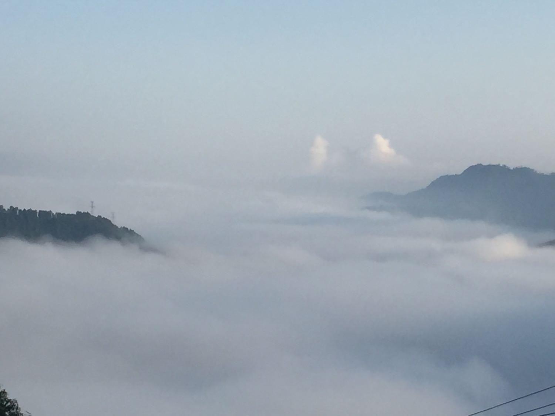 重庆万盛黑山谷生态旅游区天气预报