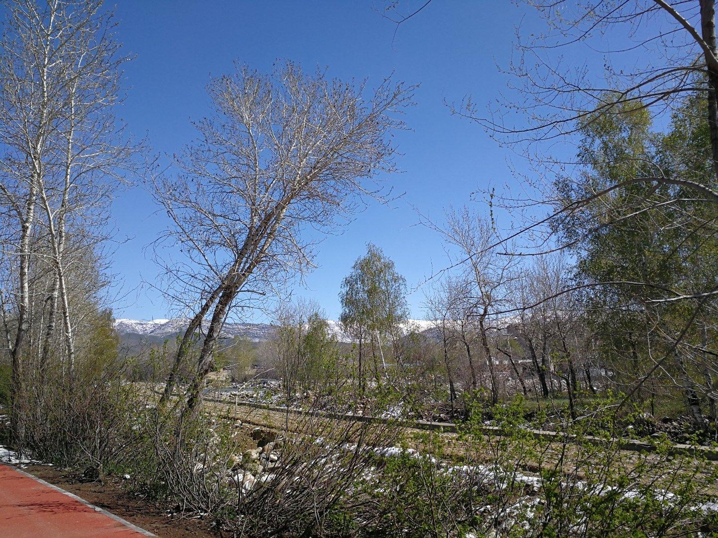 新疆维吾尔自治区阿勒泰地区阿勒泰市金山路街道阿勒泰市环境卫生管理队天气预报
