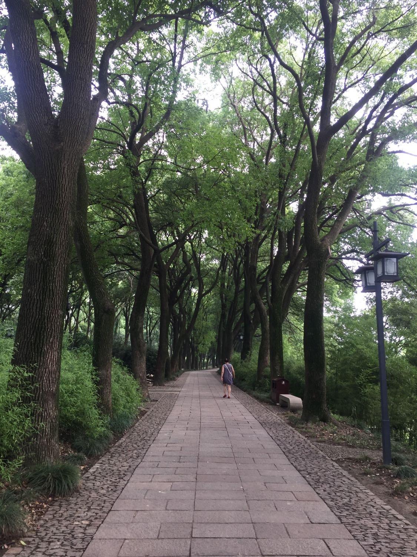 苏州市姑苏区虎丘山门内8号虎丘山风景区天气预报