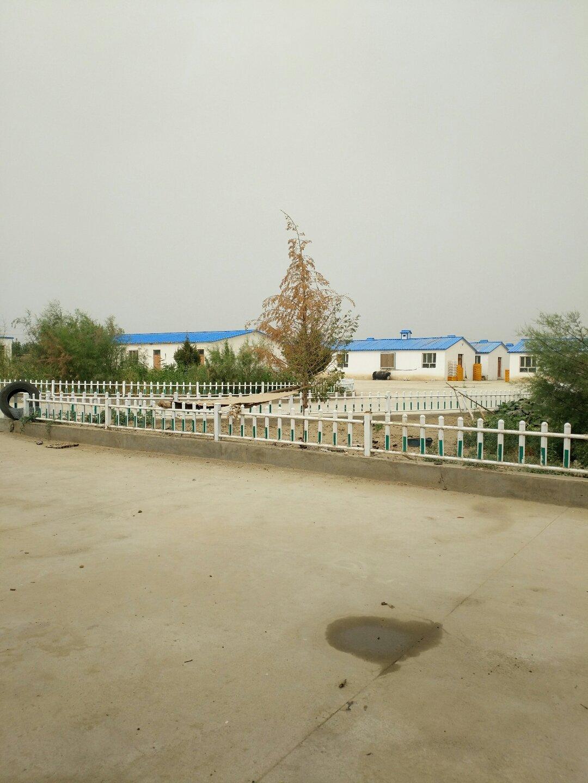 新疆维吾尔自治区和田地区策勒县250乡道靠近普斯克巴格天气预报