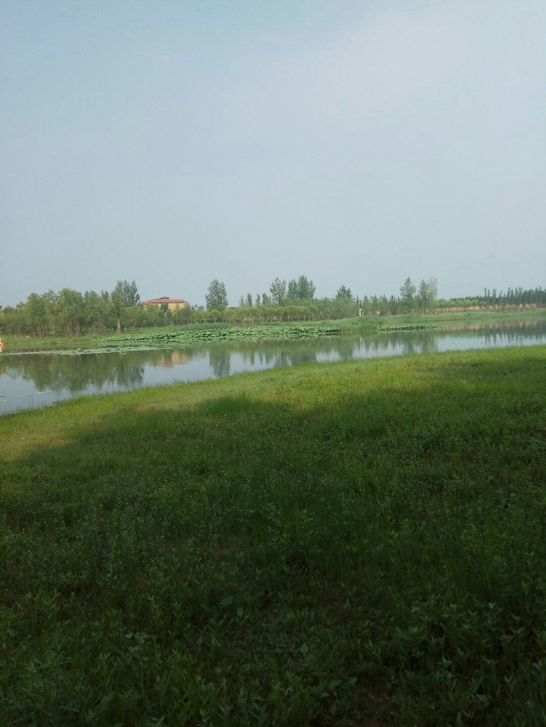 北京市丰台区魏各庄路靠近国开东方城镇发展投资有限公司天气预报