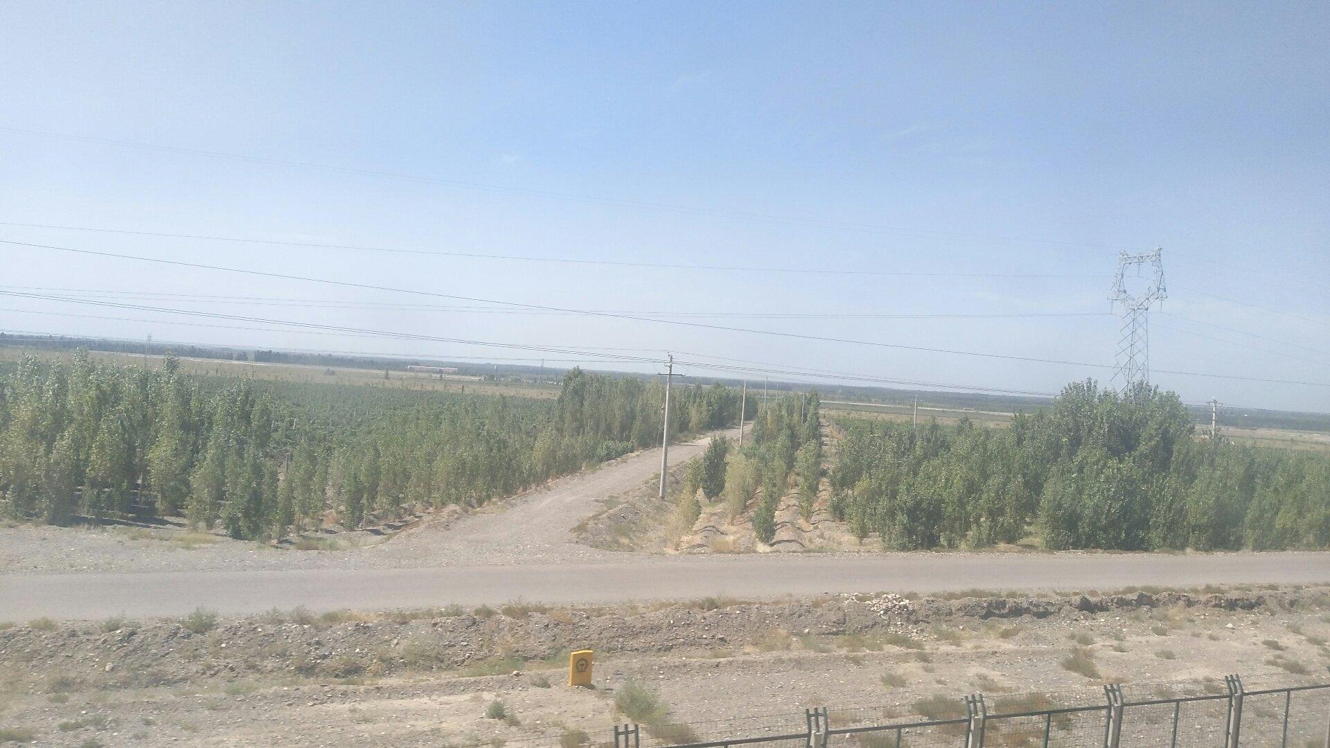 新疆维吾尔自治区巴音郭楞蒙古自治州和硕县G3012吐和高速靠近清水河大桥天气预报