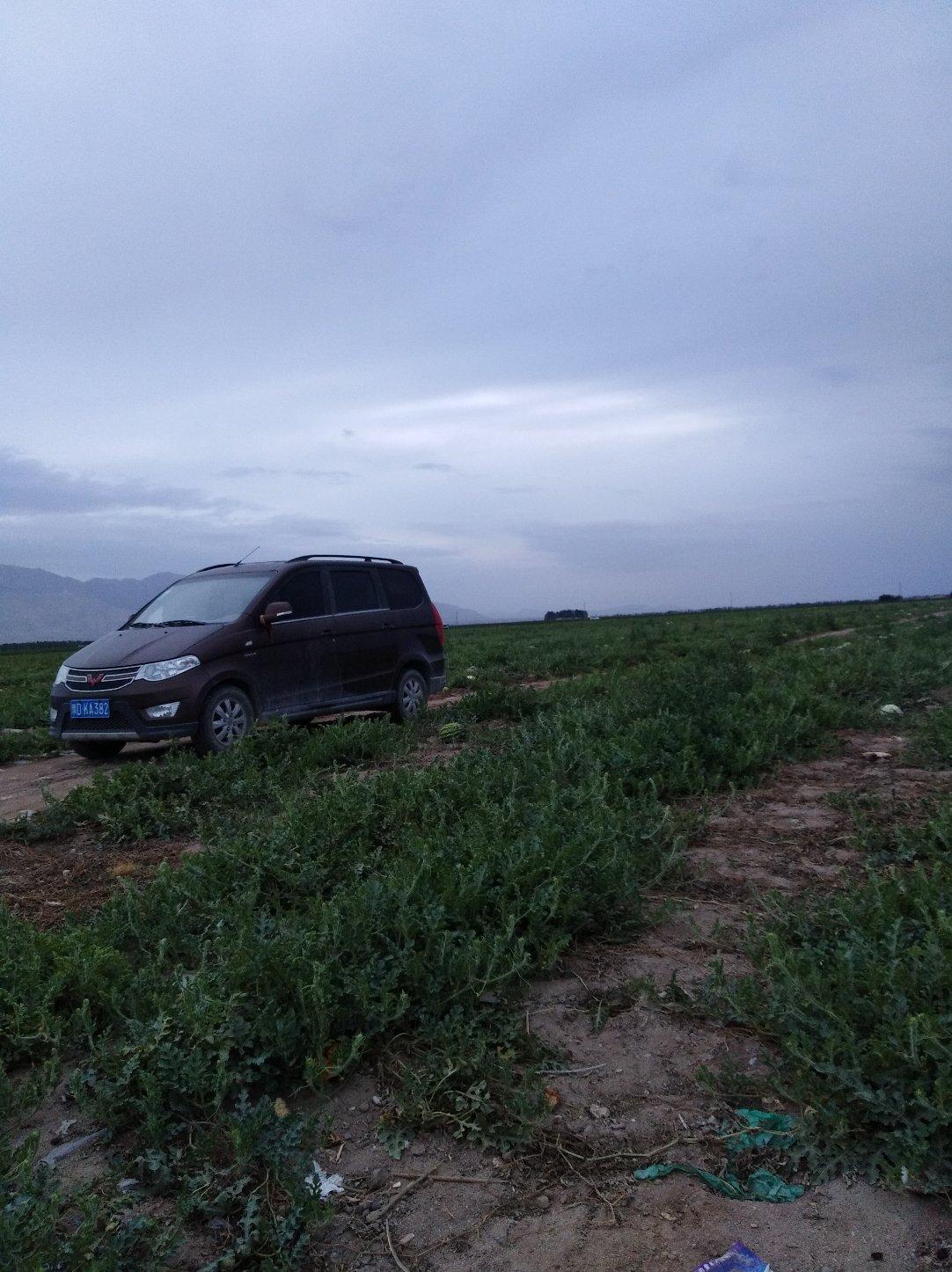 新疆维吾尔自治区巴音郭楞蒙古自治州和硕县325省道靠近G3012吐和高速入口(库尔勒方向)天气预报
