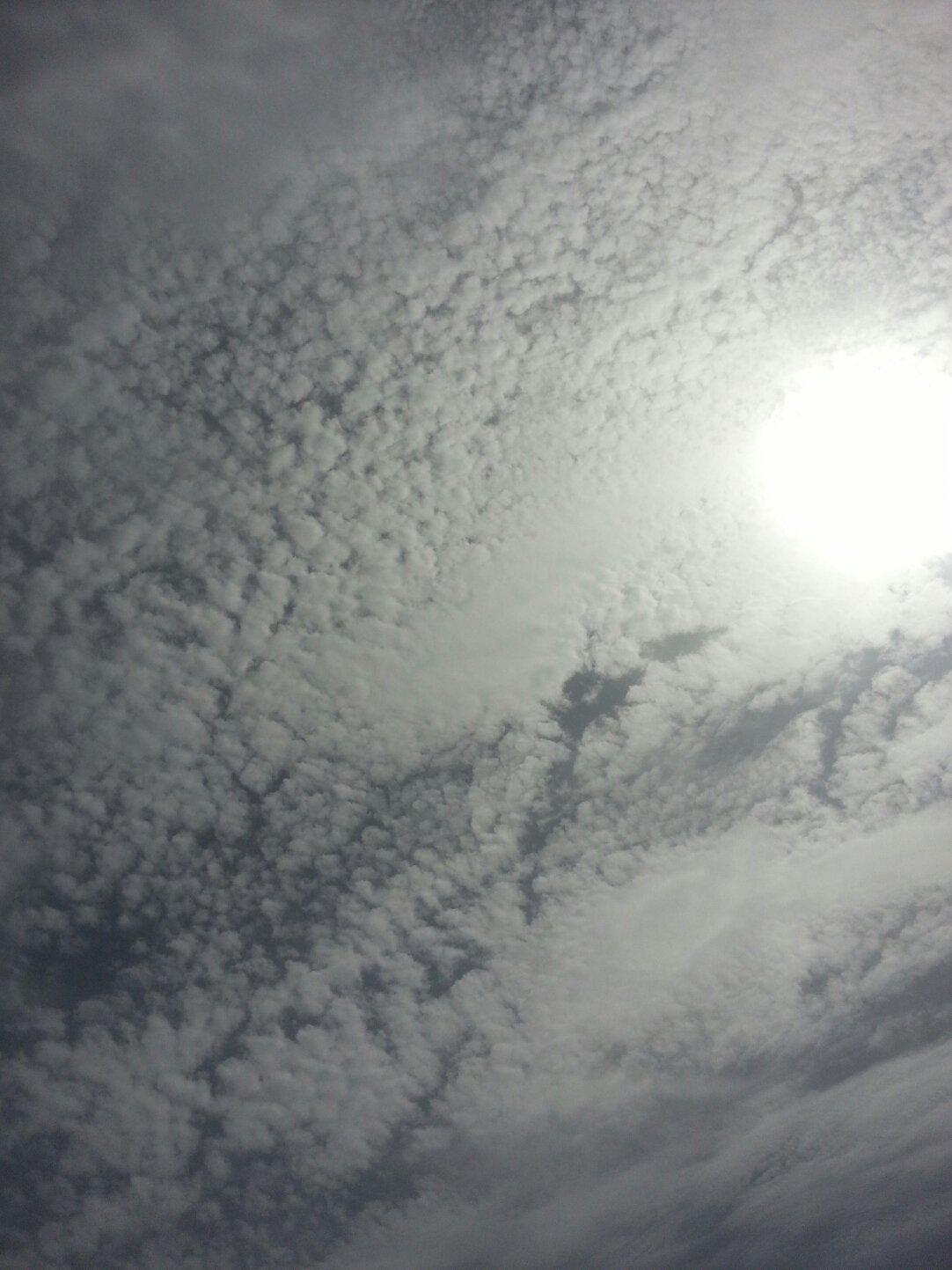 新疆维吾尔自治区新疆维吾尔自治区图木舒克市皮四段天气预报