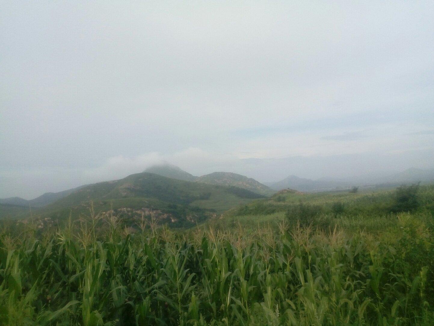 辽宁省葫芦岛市南票区306省道靠近黄土坎动物卫生监督所天气预报