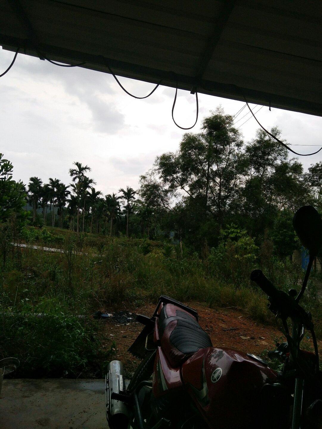 海南省海南省琼中黎族苗族自治县027乡道靠近那柏村天气预报