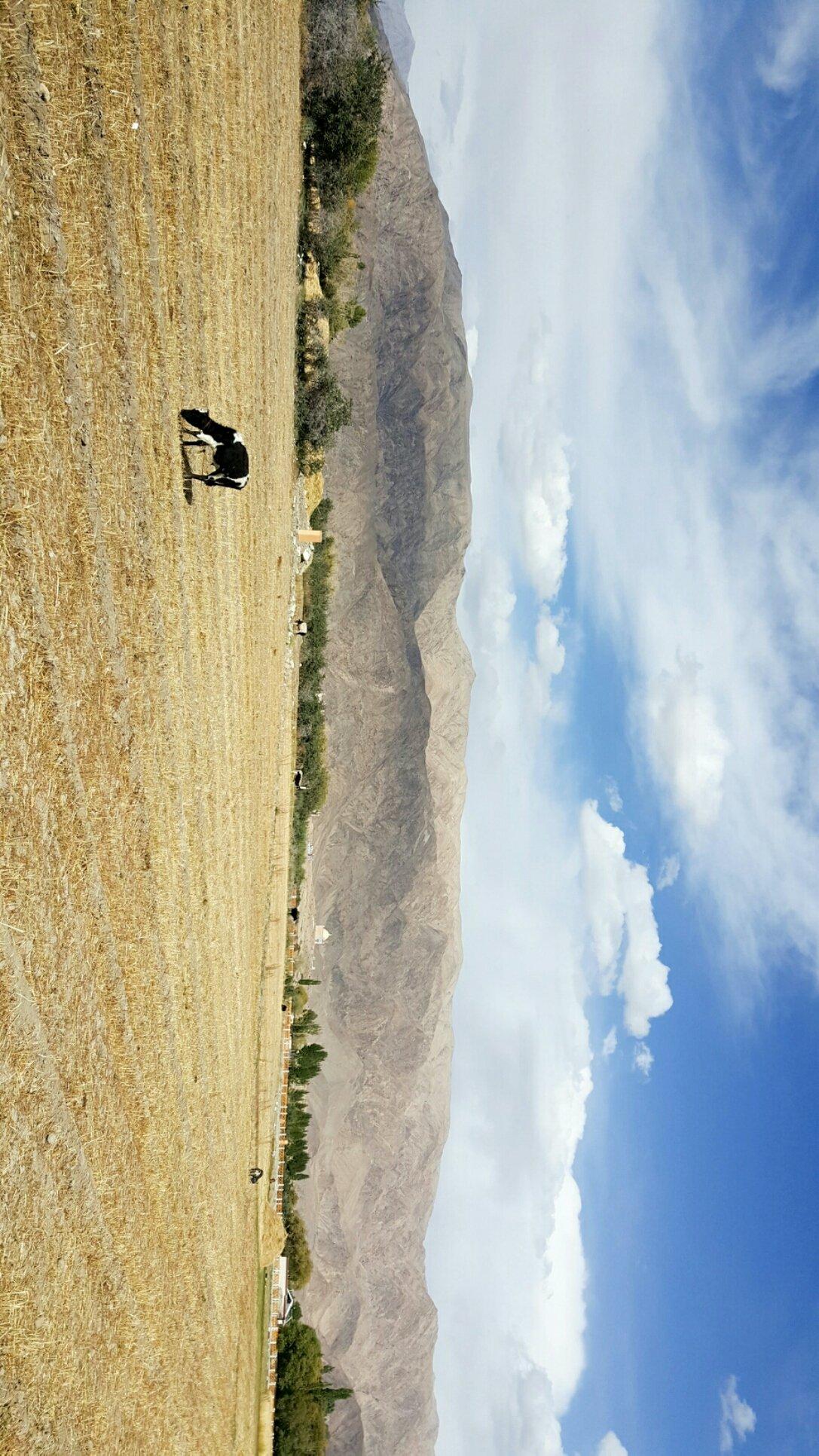 新疆维吾尔自治区喀什地区塔什库尔干塔吉克自治县塔什库尔干路靠近塔什库尔干客运站天气预报