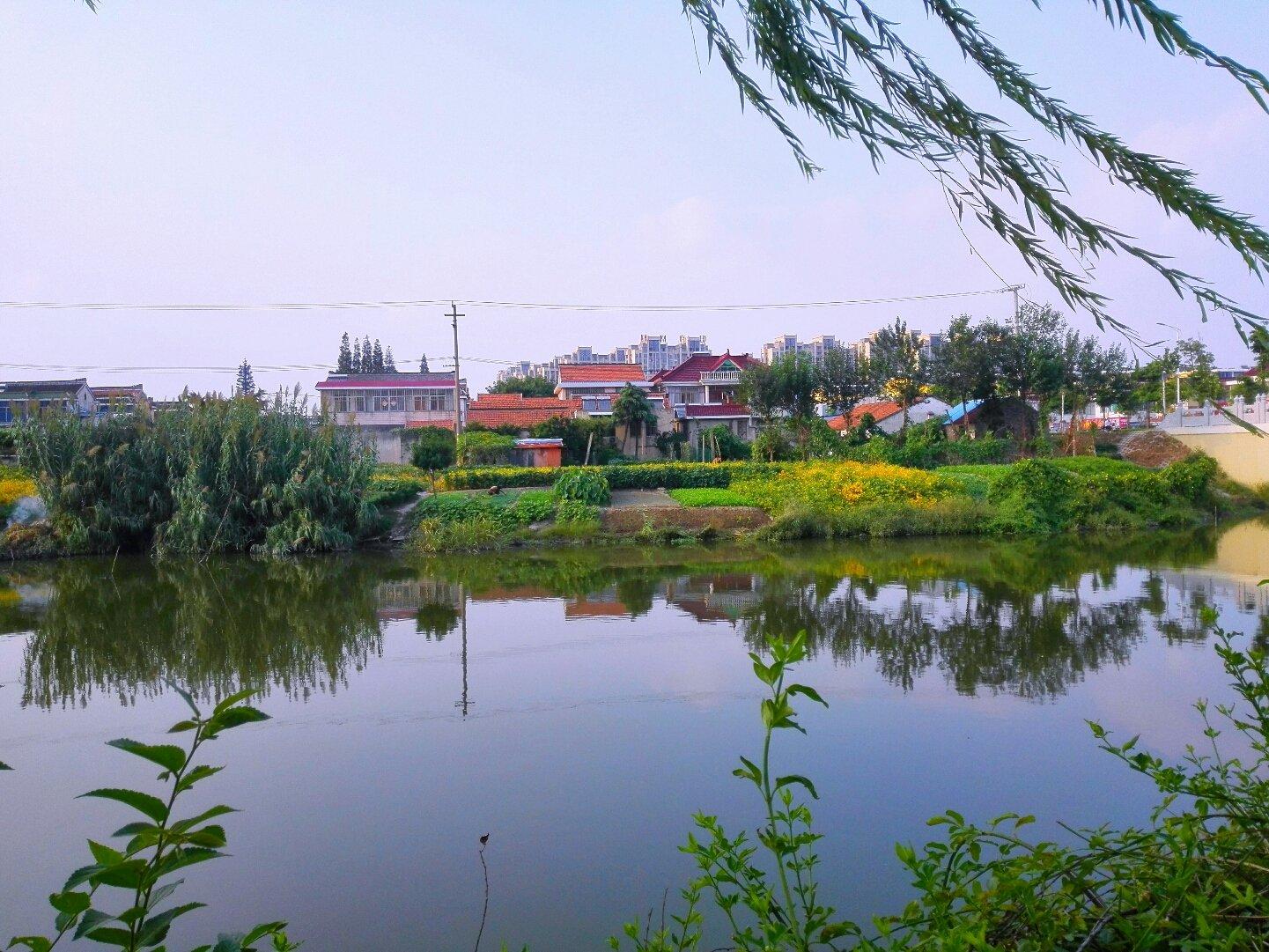 江苏省南通市海安县海安镇凤山社区天气预报
