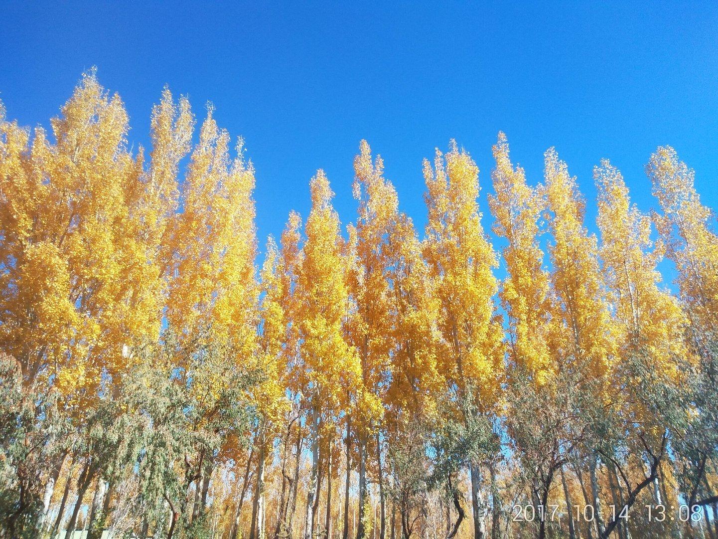 新疆维吾尔自治区阿勒泰地区阿勒泰市中瀚北路天气预报