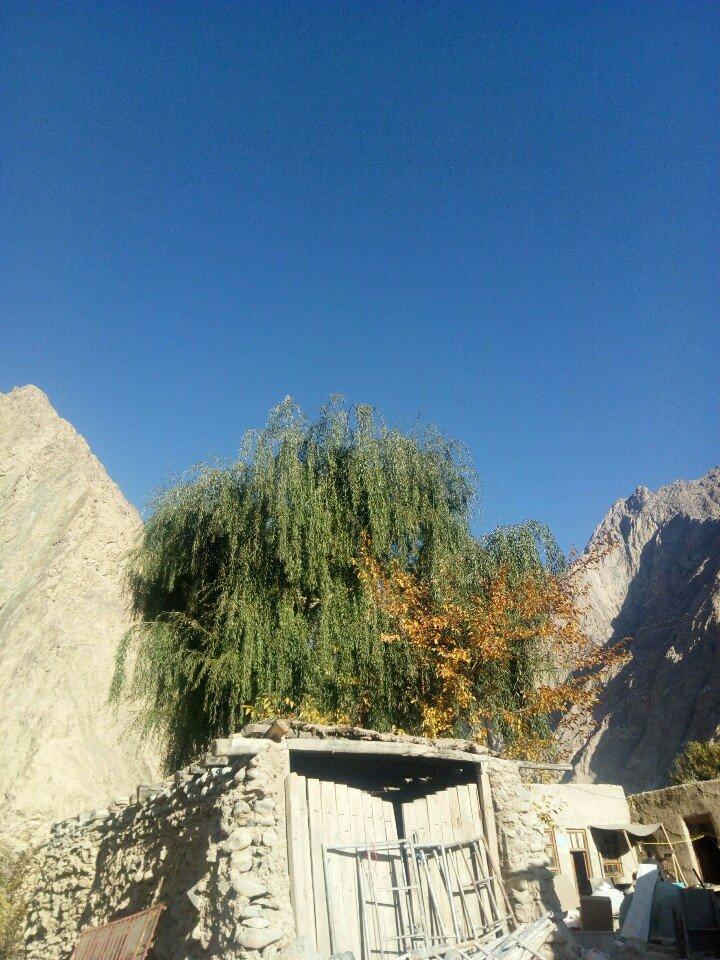 新疆维吾尔自治区塔什库尔干塔吉克自治县大同栏杆 村天气预报