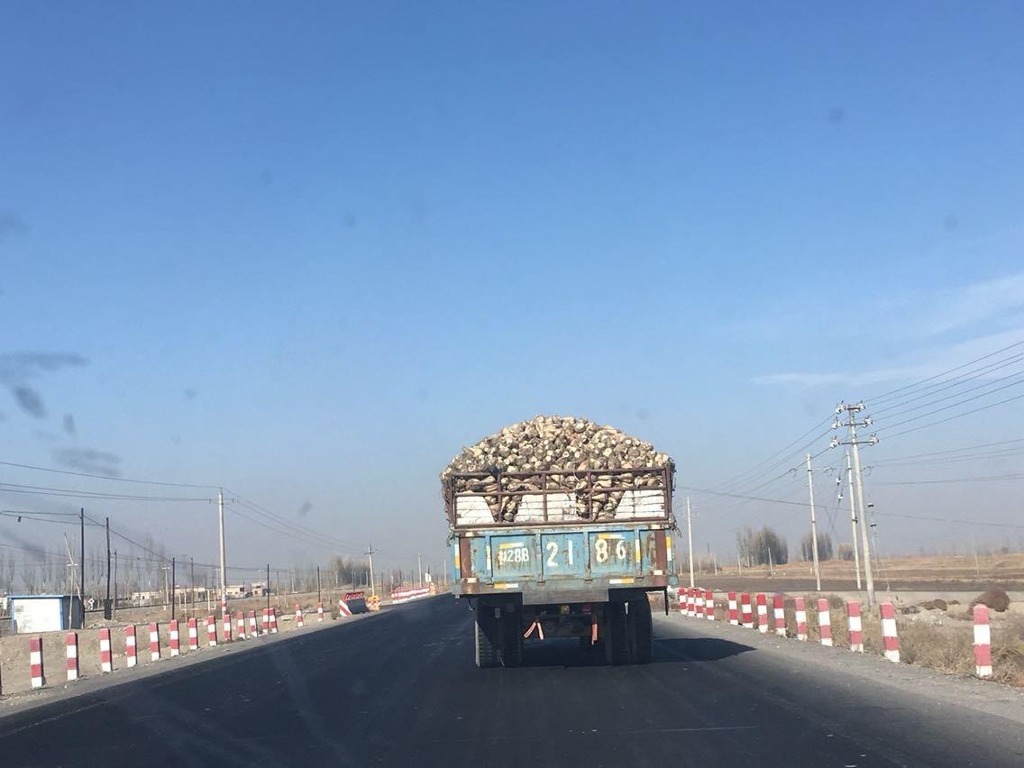 巴音郭楞蒙古自治州焉耆回族自治县236乡道天气预报