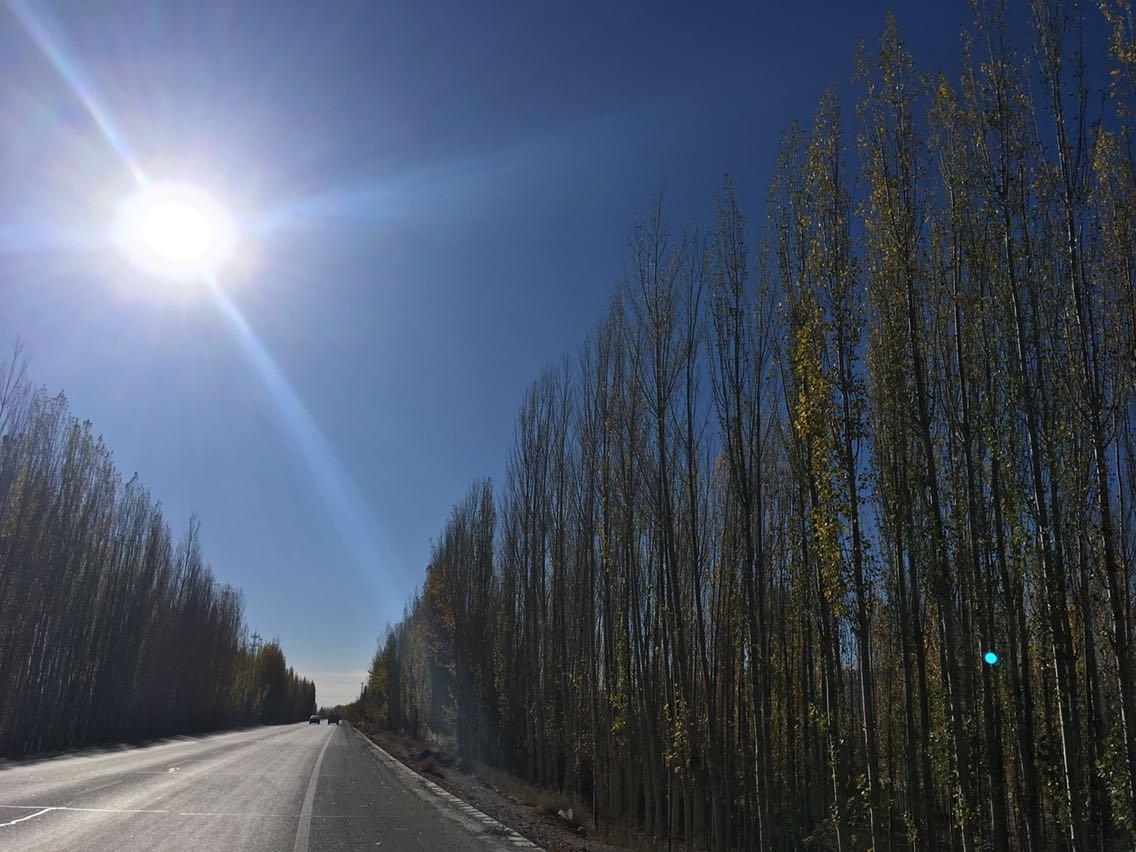 焉耆回族自治县天气预报