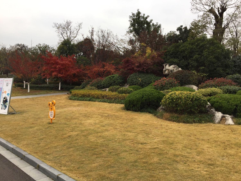 徐州市云龙区兵马俑路1号天气预报
