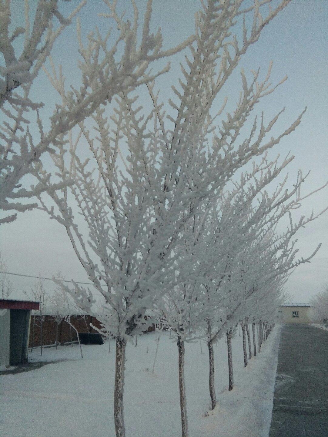 新疆维吾尔自治区阿勒泰地区富蕴县富库段靠近新天地乐途酒店天气预报
