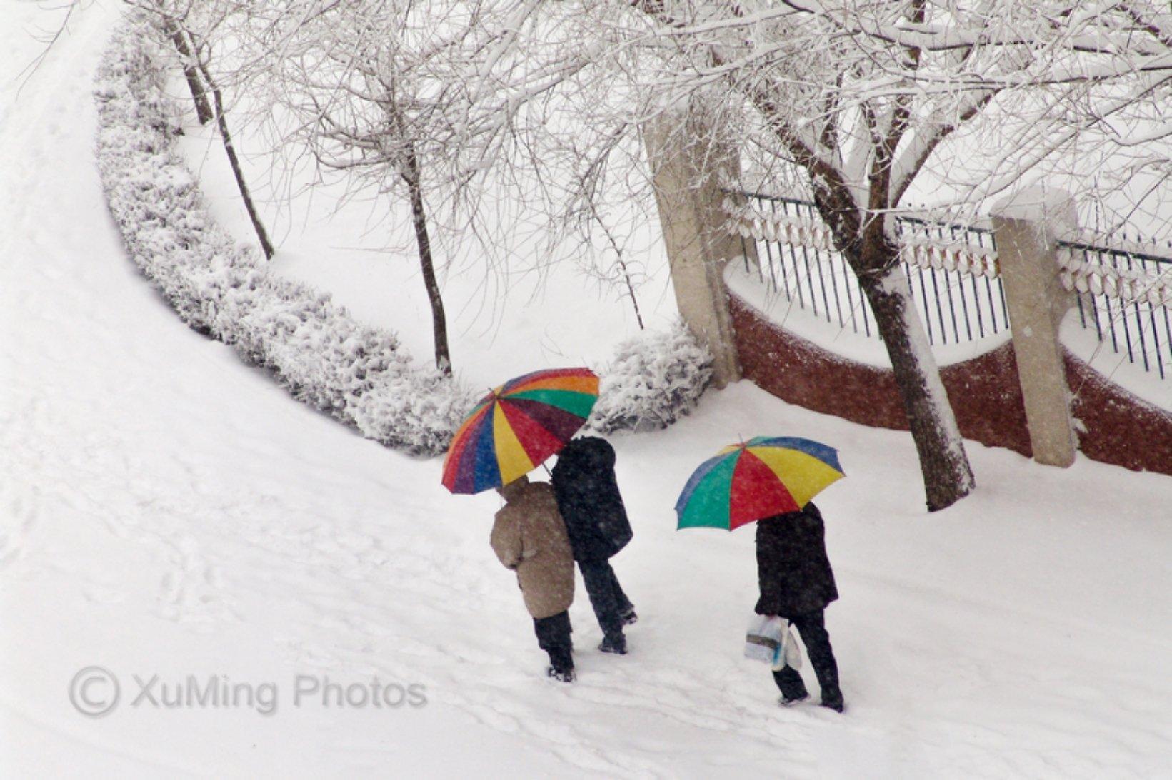 辽宁省葫芦岛市龙港区滨海街道龙湾大街3-8号天气预报